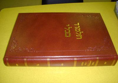 Talmud Bavli
